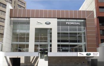Jaguar Pedregal
